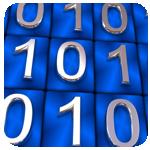 Работа с многобайтными переменными, Формат данных